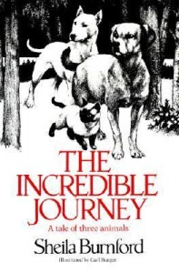 incrediblejourney